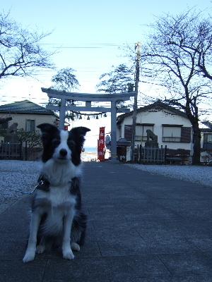 100102神社2.JPG