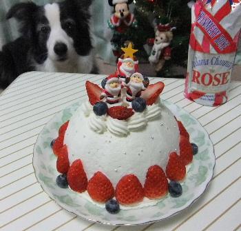 111225クリスマスケーキ.JPG