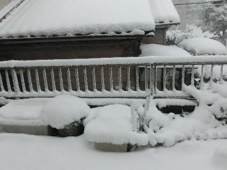 140208雪・庭.JPG